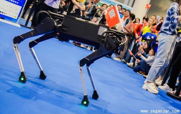 衢州預賽暨首屆衢州人工智能科技節