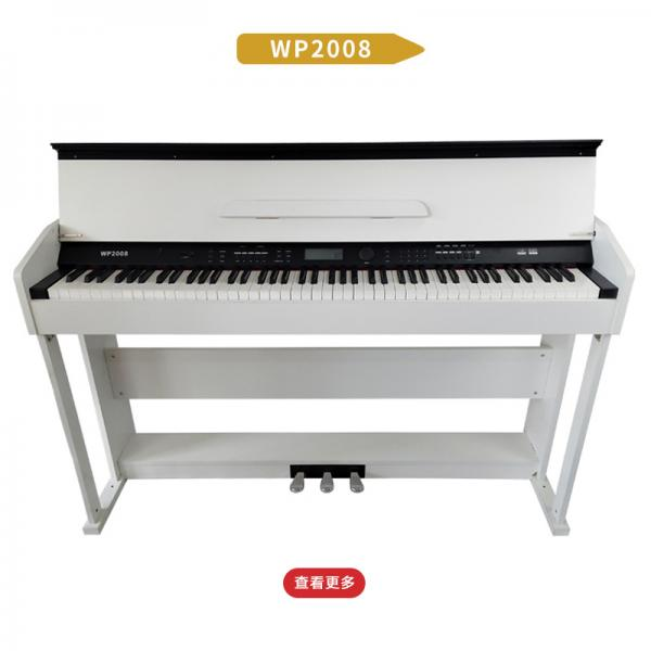 WP2008