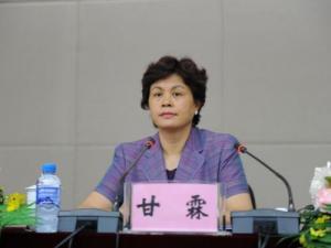 甘霖-国家工商行政管理总局副局长